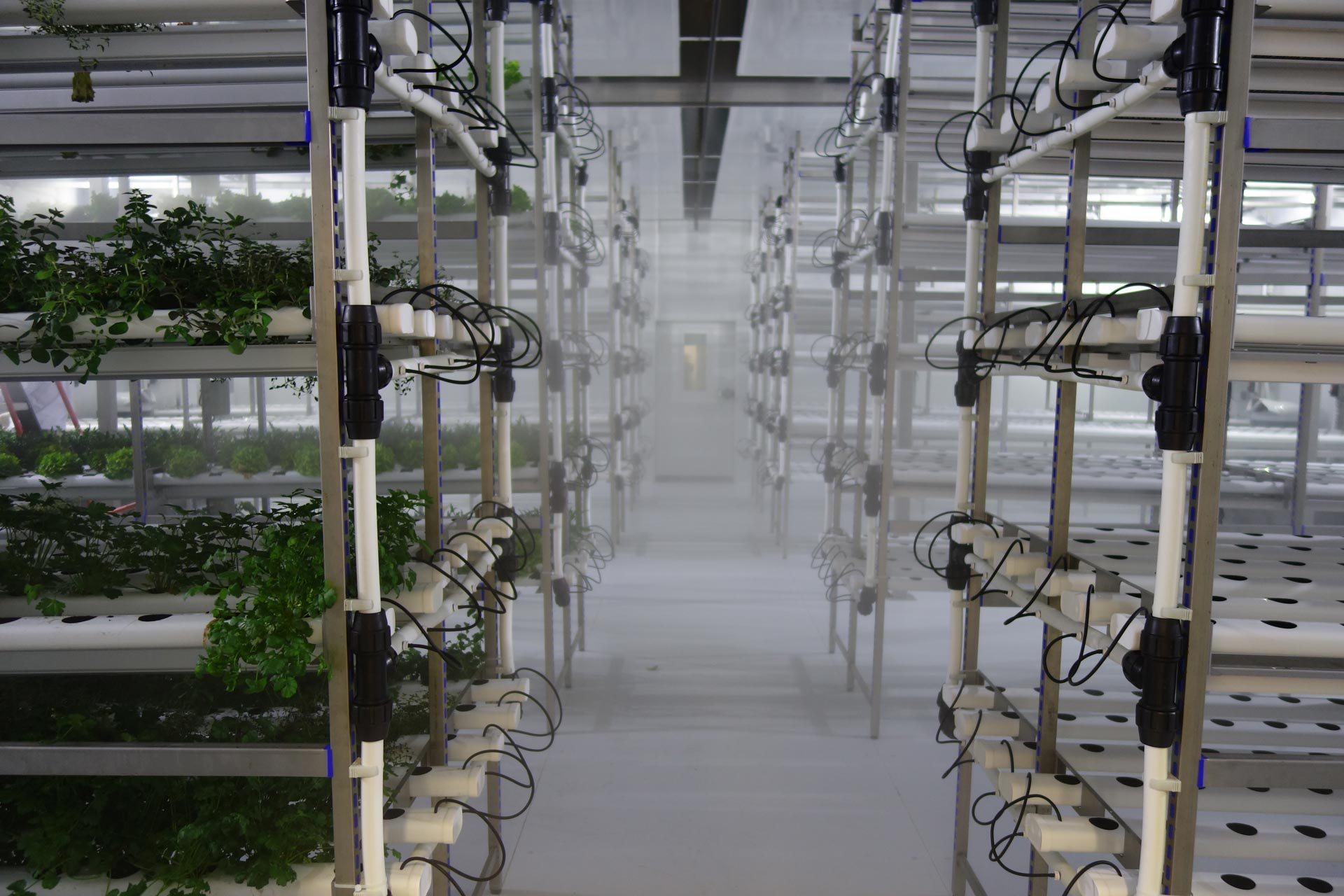 Indoor Vertical Farming Aralab